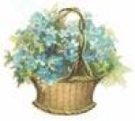 Forget-me-not Basket